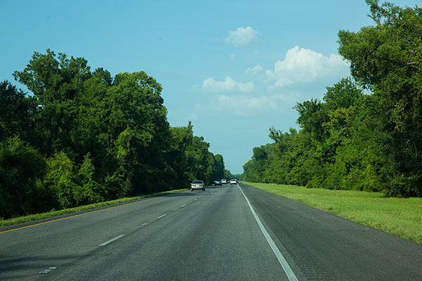 A little Louisiana color from the passenger seat of the car.